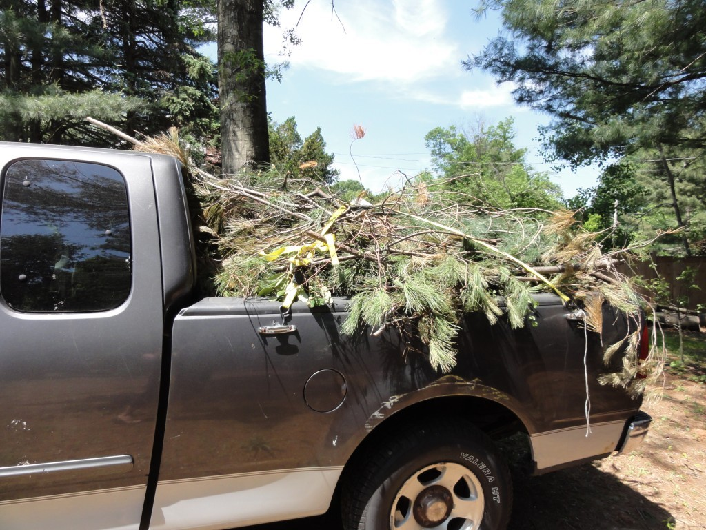 Free Mulch from the Township - truck filled with brush