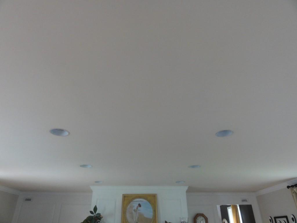 Paint Recessed Light Trim - Lehman Lane