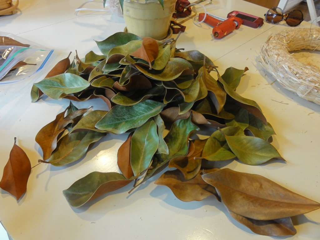 DIY How to make a dried or fresh magnolia wreath - lehmanlane.net