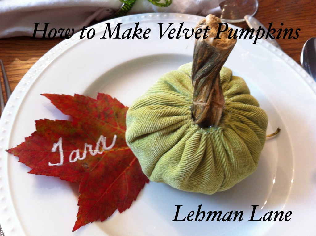 How to Make Velvet Pumpkins-for less than $2