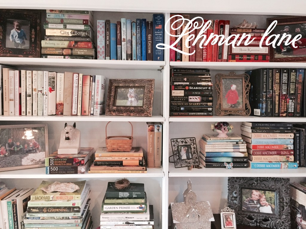 Living Room Reveal: Our New Bookcase