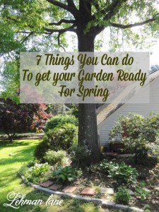 Wondering how to get your garden ready for Spring? Here are the 7 things I do every year!