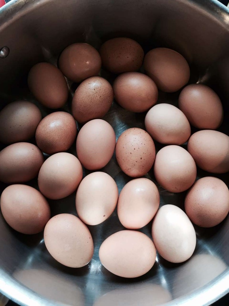 The Day I Dyed Eggs Naturally
