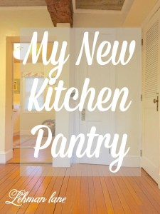 We just added what might be the smallest Pantry Ever to Our Kitchen but it has been a HUGE help in organizing my Kitchen!