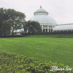New York Botanical Gardens Trip