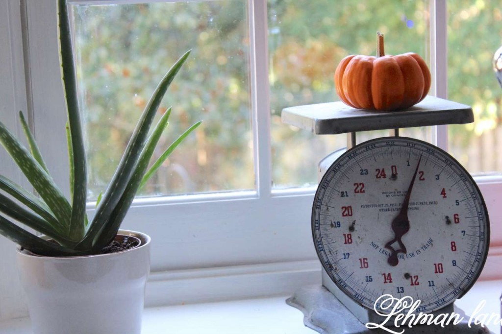 Fall home tour / 8 tips for decorating for fall on a budget / kitchen scale / pumpkin