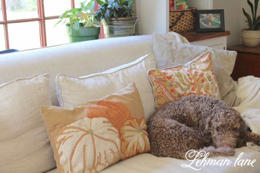 Fall Home Tou / 8 ways to beautiful decorate for fall on a budget / pottery barn pumpkin pillow