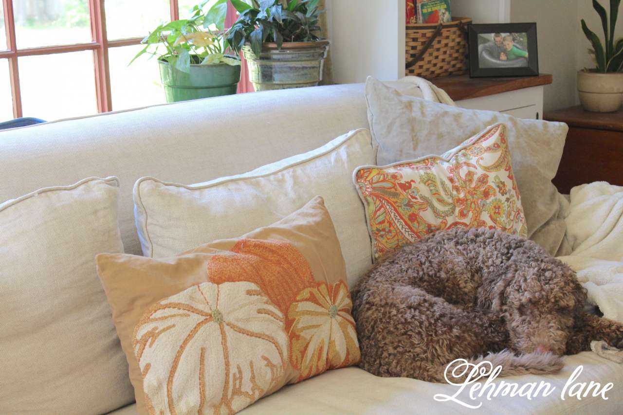 Fall decorating on a budget - Fall Home Tou 8 Ways To Beautiful Decorate For Fall On A Budget Pottery