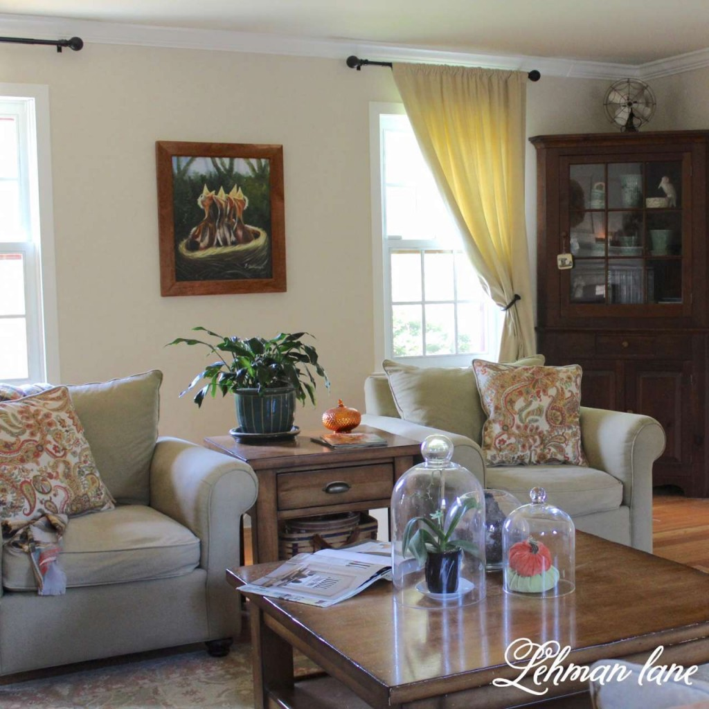 Fall Home Tour / living room