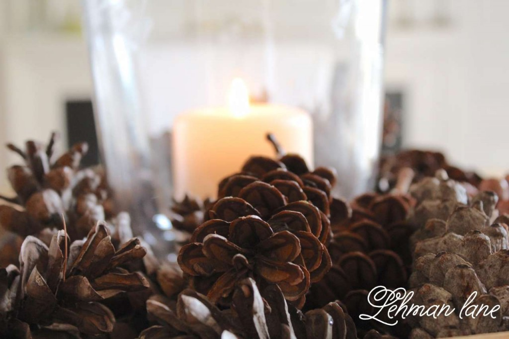 dining room / pine cone / candle