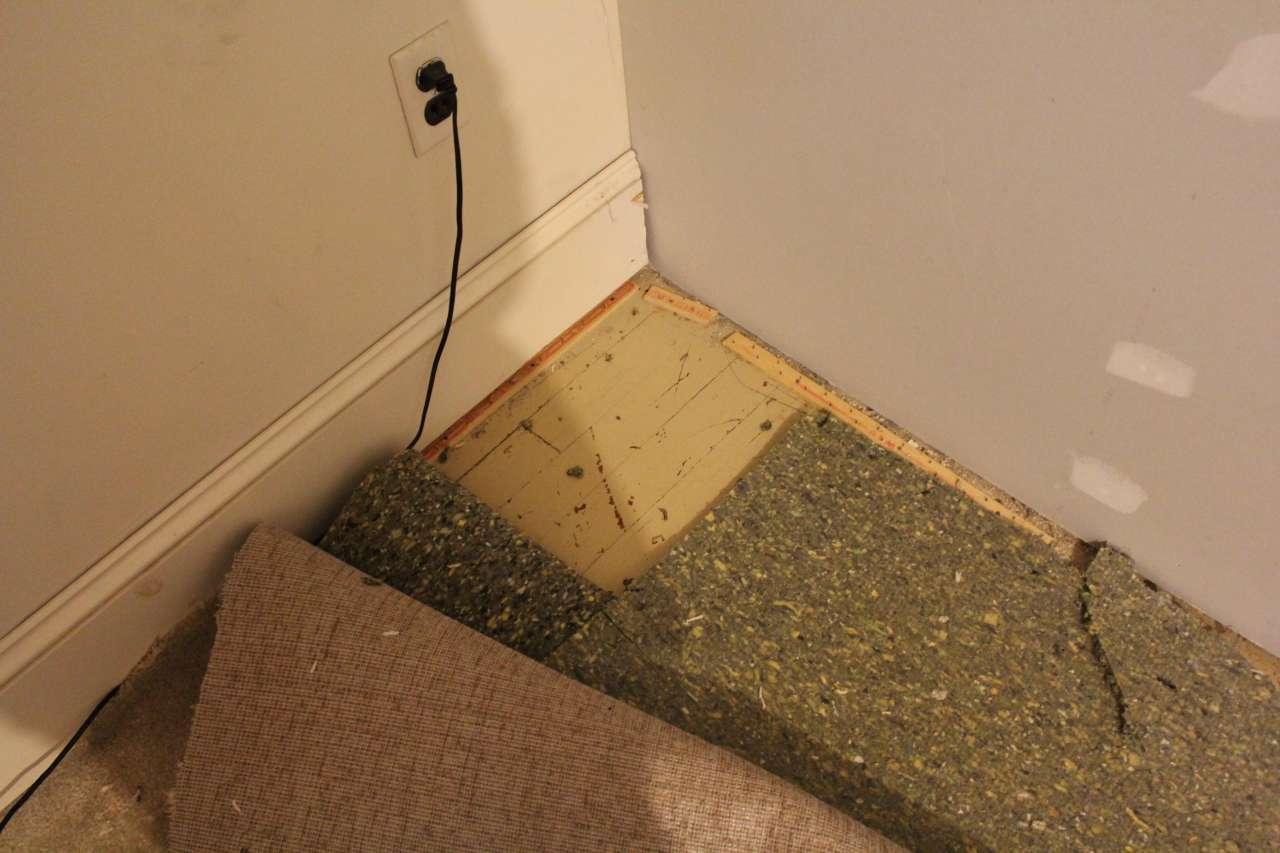 Pulling up Carpet