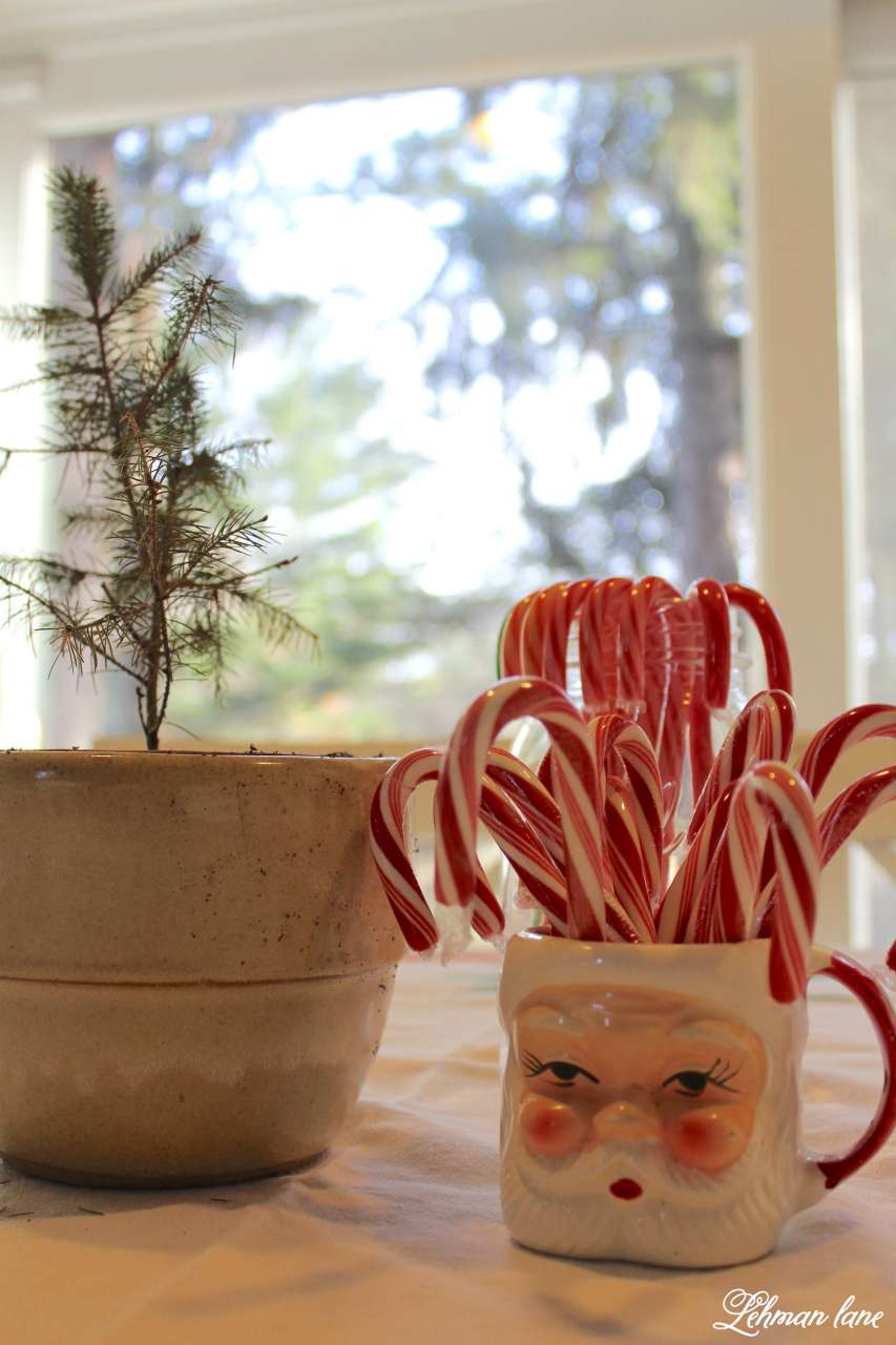 Christmas Home Tour 2015 vintage santa mug candy canes evergreen tree kitchen
