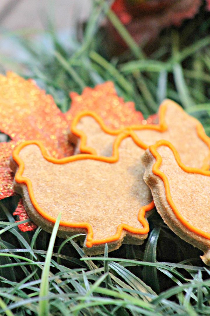 Thanksgiving-hypoallergenic-dog-treat-3-homemade-recipe-1-of-1