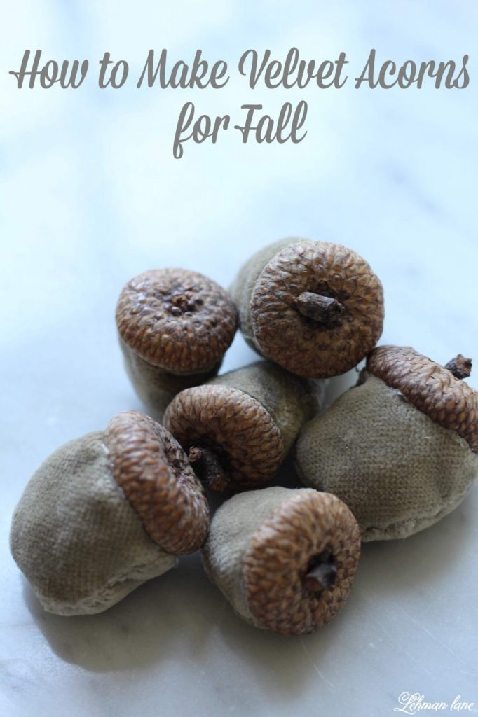 DIY Velvet Acorns -   They were very simple to make & only took about 10 minutes per acorn.  Plus, they were totally free for me to make. #DIY #velvetacorns #acorns #falldiy #thanksgiving http://lehmanlane.net