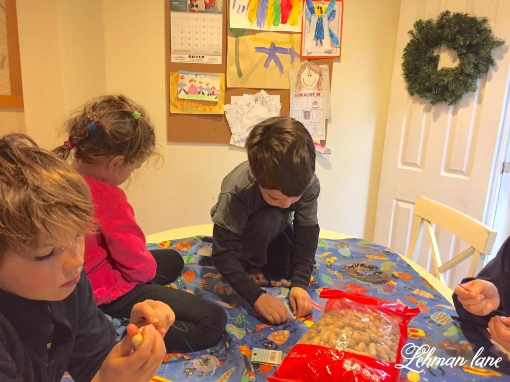 12 Days of Christmas Blog Hop - Simple Peanut Ornament for the Birds