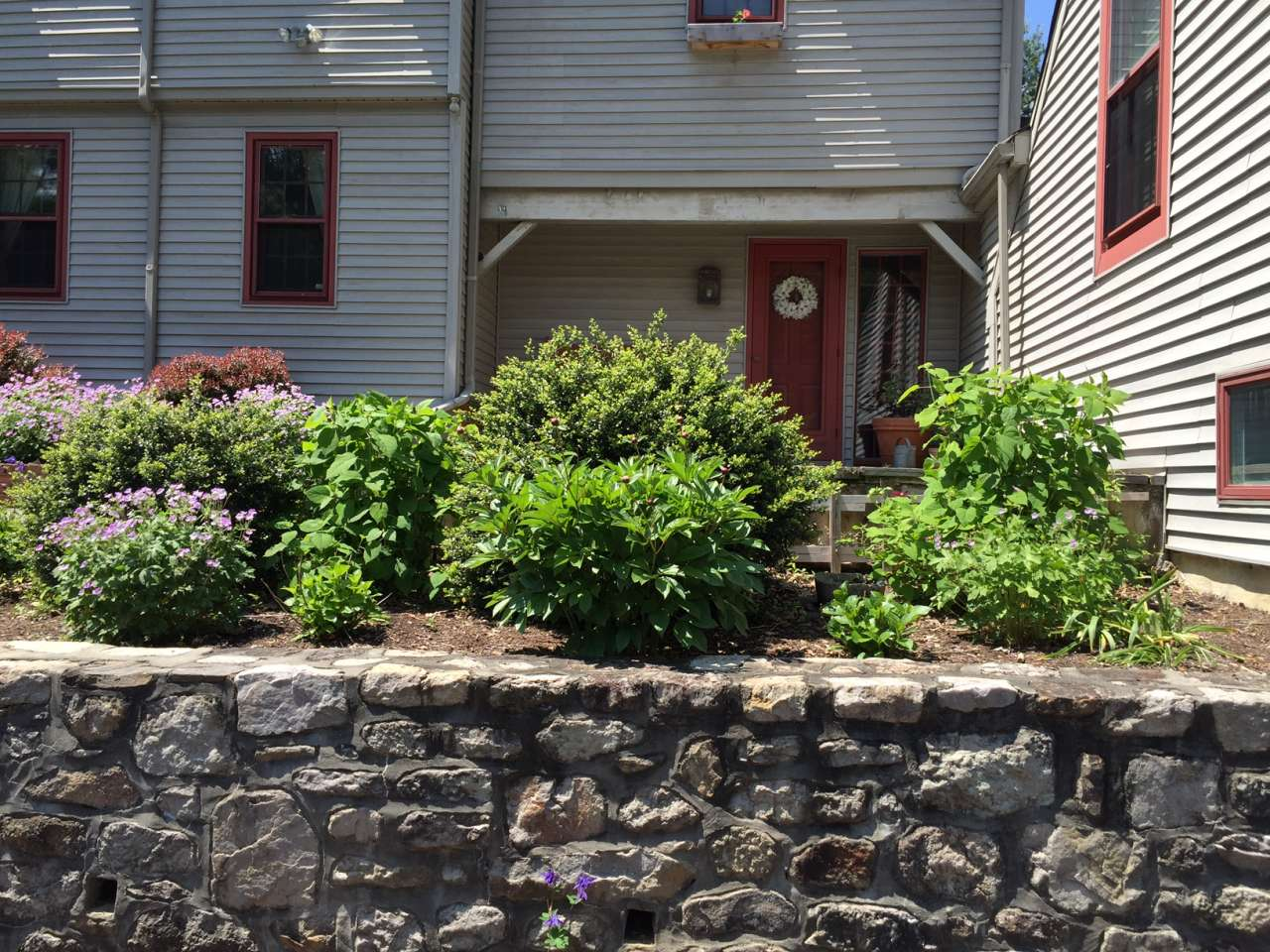 Curb appeal hop - landscaping before
