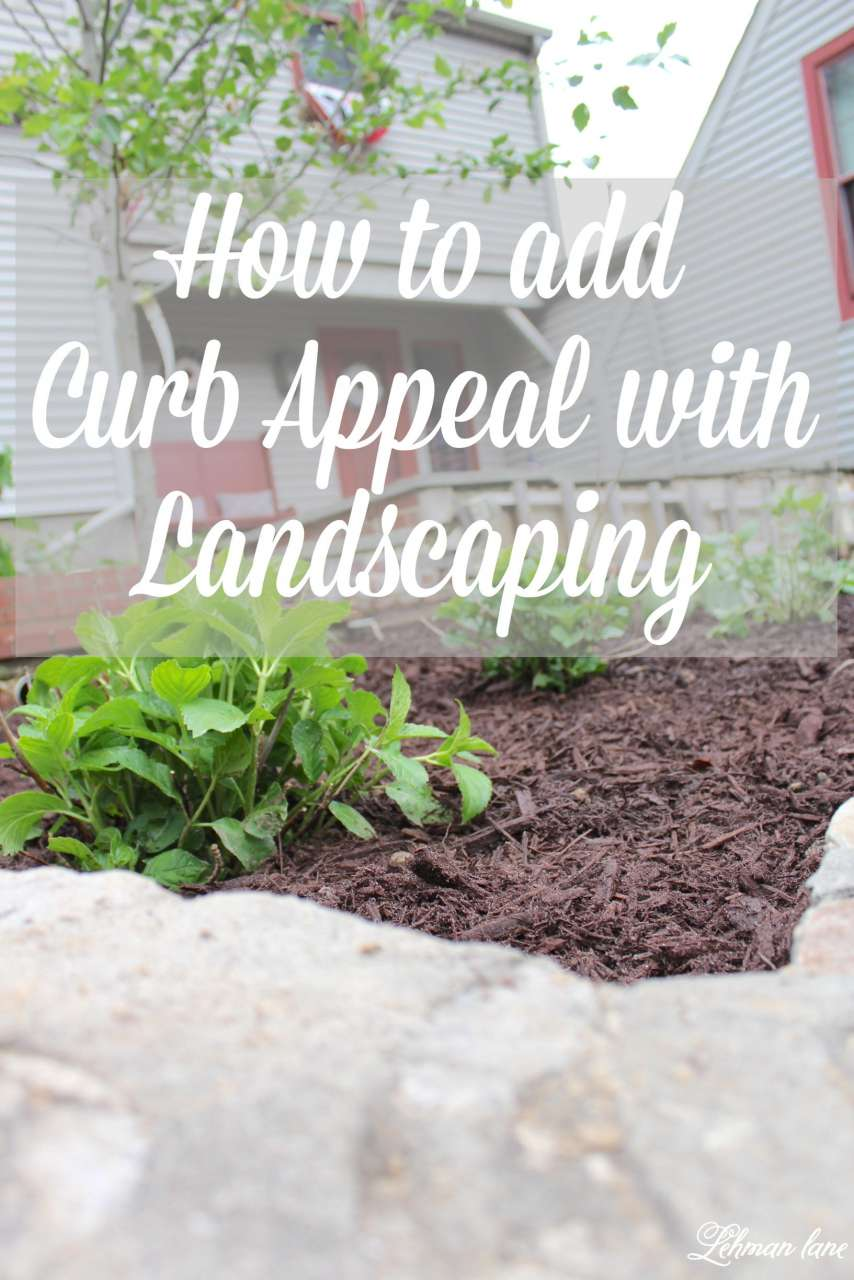 One great way to add curb appeal is through landscaping. See how I maximized my curb appeal through landscaping by moving what shrubs we already had and choosing a few new ones. Also check out 10 more curb appeal ideas from my friends! http://lehmanlane.net