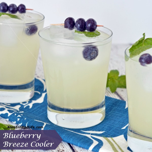 DREAM CREATE INSPIRE LINK 49 blueberry-breeze-cooler-recipe-square