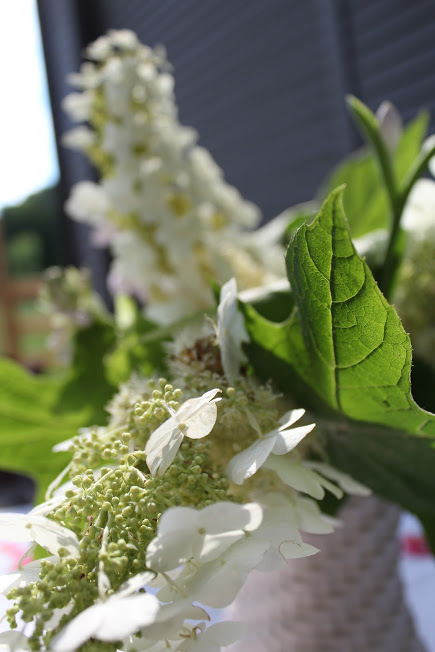 Summer Garden Tour & Outdoor Spaces Blog Hop - oakleaf hydrangea