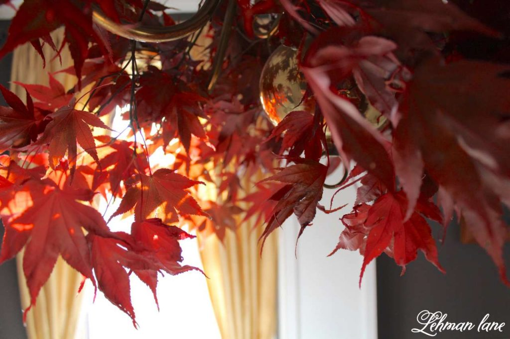 Quick and Simple Thanksgiving Table Setting = decorating in under 10 mins - create & share challenge - Lehman lane - maple leaf chandelier