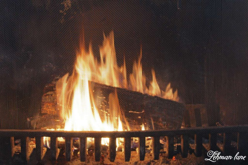 Winter mantel decor - fire