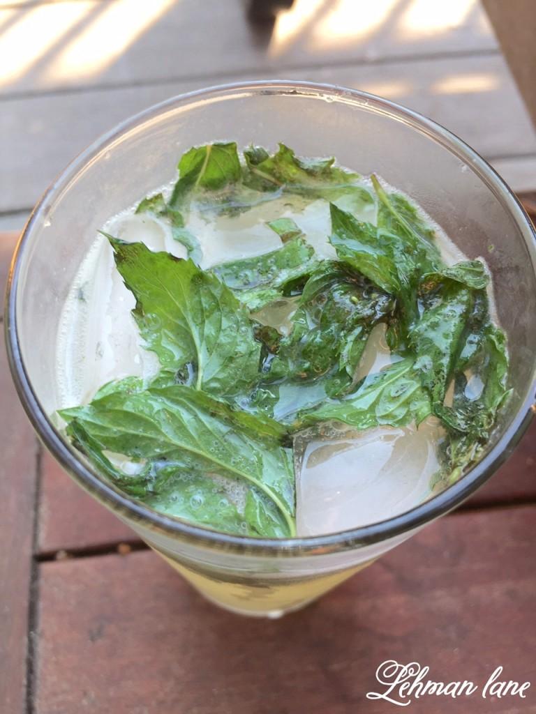 Sharing our family's favorite mojito recipe #recipe http://lehmanlane.net