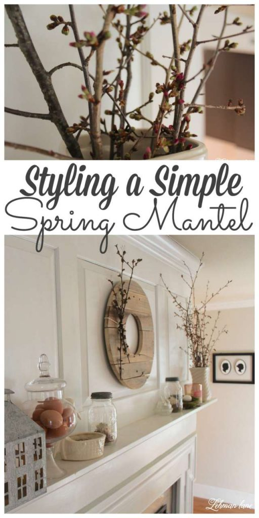 I styled the Spring Mantel inin my farmhouse simply using nature as my guide. Stop by to se my Spring mantel along with over 20 more spring mantels from my blogging friend's for even more spring ideas! #spring #springmantel http://lehmanlane.net