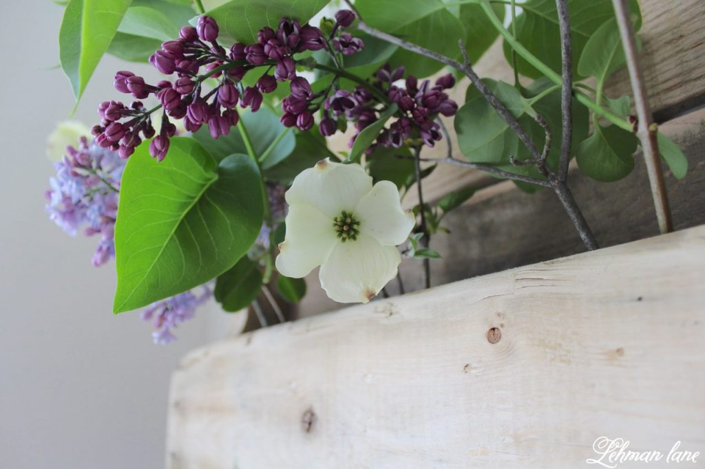DIY Wood Pallet Shelf for Flowers - dogwood and lilac blooms
