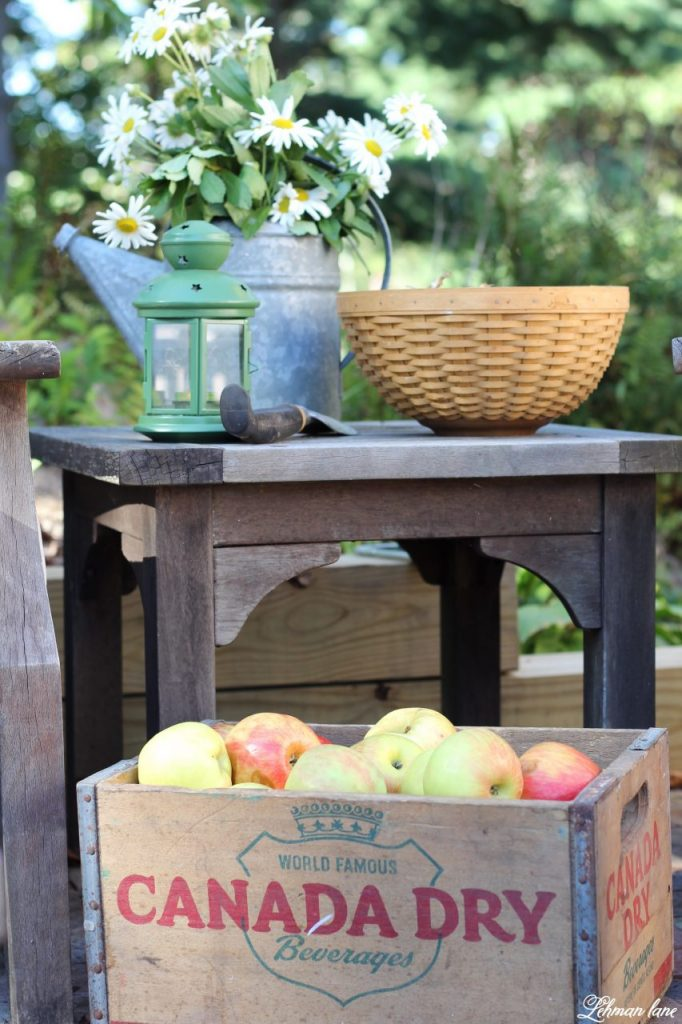 Stop by to see our fall patio and see even more beautiful outdoor spaces from my friends! #fall #falldecor #falloutdoors #fallpatio http://lehmanlane.net white daisies, apple in wooden box