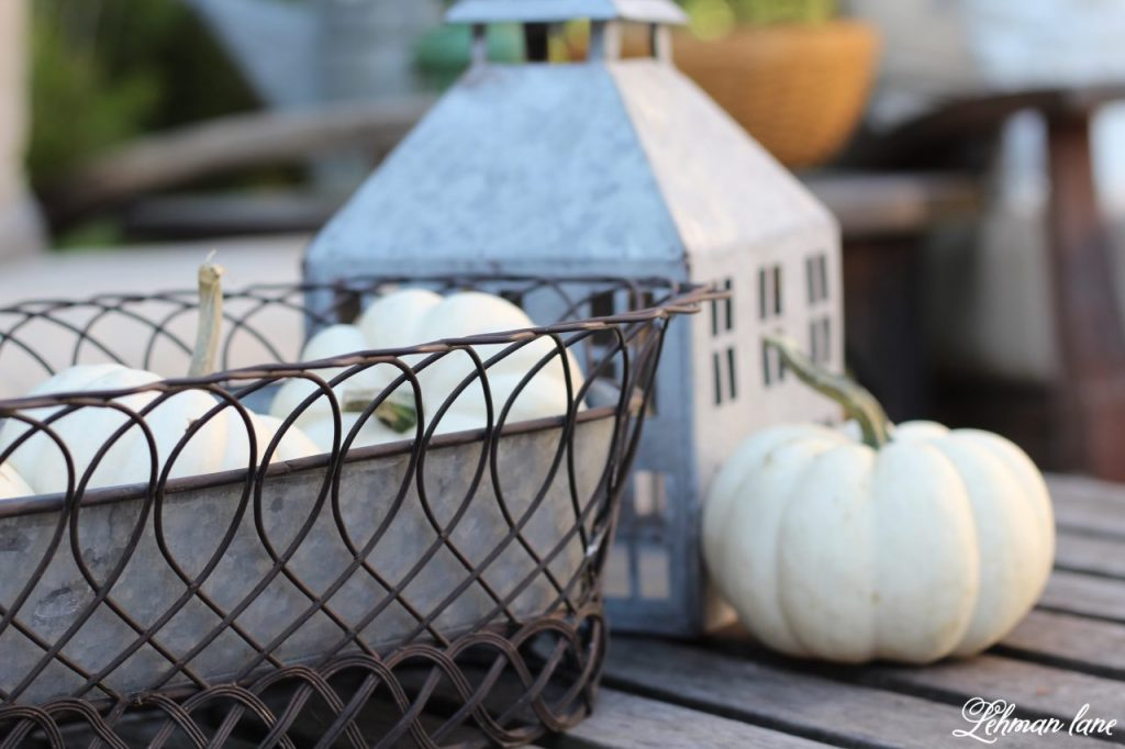 Stop by to see our fall patio and see even more beautiful outdoor spaces from my friends! #fall #falldecor #falloutdoors #fallpatio http://lehmanlane.net - white pumpkins and lantern