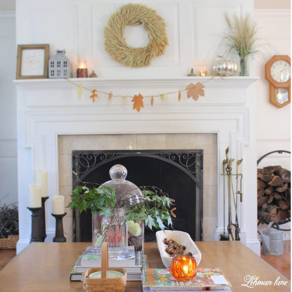 The temperature is dropping, the leaves are turning and it's finally starting to feel like fall at our farmhouse.  Every year I try and change up my fall décor so it looks new and fresh. Sharing my simple mantel decor along with even more mantels from my blogging friends. #fall #manteldecor #falldecor #fireplacemantel http://lehmanlane.net