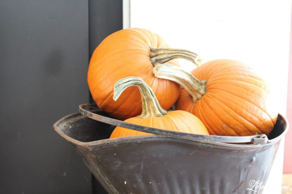 Splendor of autumn home tour with Balsam hill - orange pumpkins in ash bucket