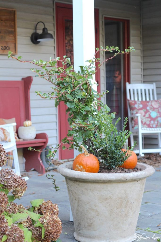 front porch planters for our pergola -farmhouse, stone planters, boxwood, fall