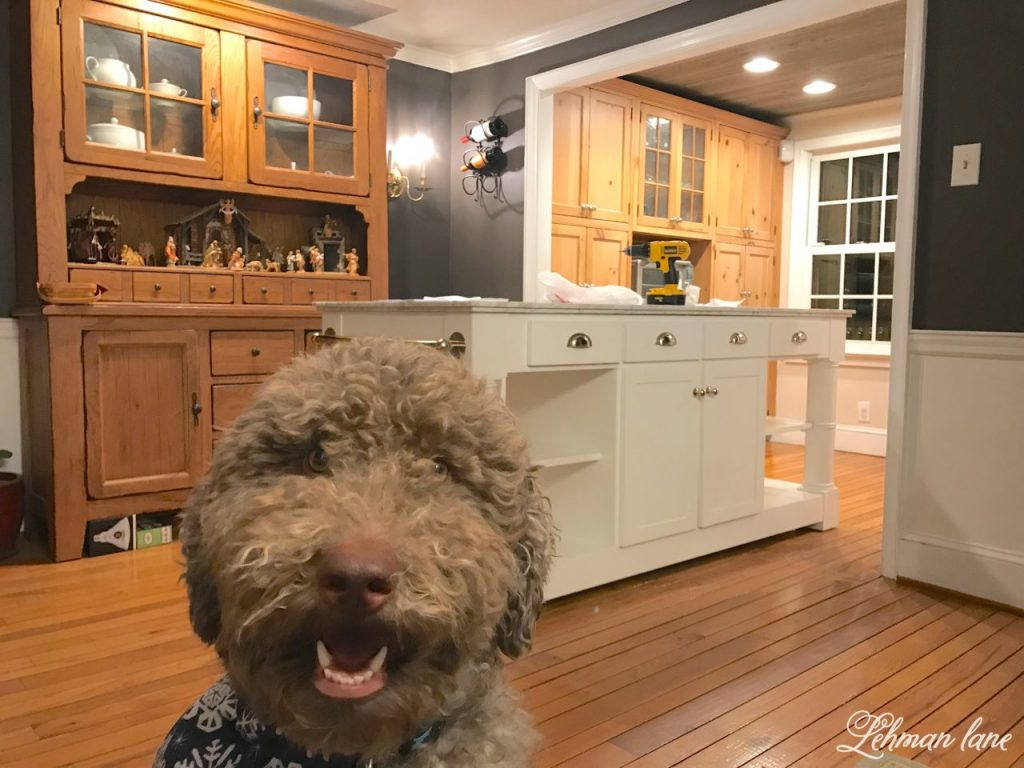 I am happy to announce we are more than halfway through our kitchen remodel and we have a new kitchen island, woo hoo! - Moose - dining room before