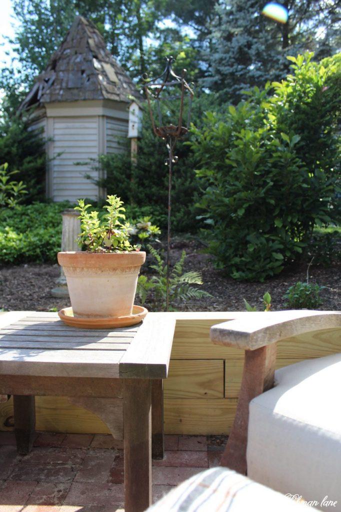 Our New Patio Garden