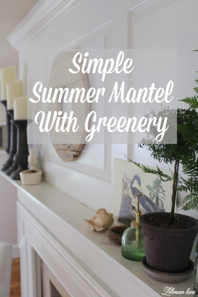 Summer Mantel with Greenery - Summer is the time of year most of my plants go on holiday to our backyard. However, I always bring a few in to add color to my fireplace mantel. I want my summer mantel to be as colorful & green as the yard outside my window. Decorating with greenery can be easy as pie & totally free when it's found in your home garden :). Check out my summer mantel along with even more summertime mantel decorating ideas from my blogging friends! #summermantel http://lehmanlane.net