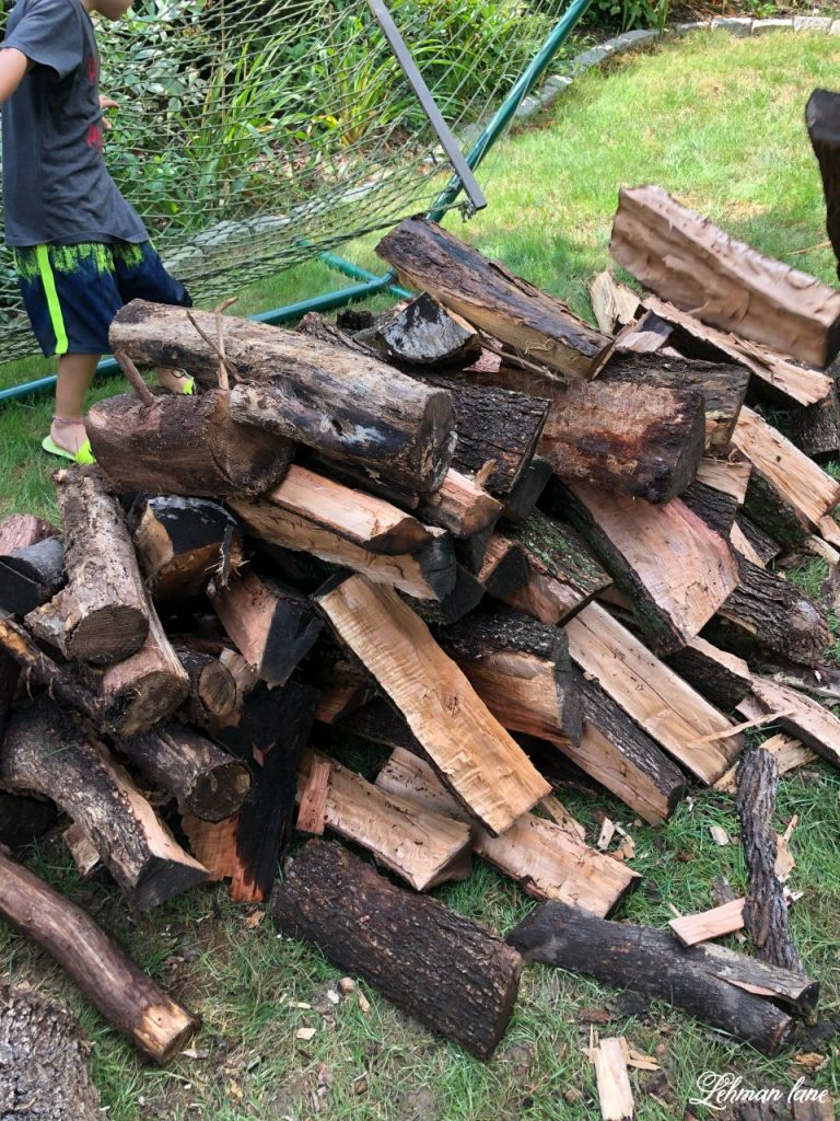 Simple DIY Firewood Rack -Our family enjoys fires year round and we really needed someplace to store all the firewood we had in our yard.  I made this simple DIY firewood rack for less than $30 (not counting the cover) in less than an hour!  Truly, if you own a saw & a screwdriver you can make this firewood rack. #firewood #diy http://lehmanlane.net