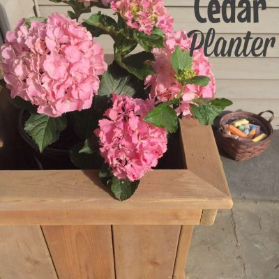 DIY: How to Make a Cedar Planter