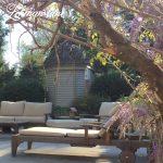 Come take a tour of our garden in the spring!