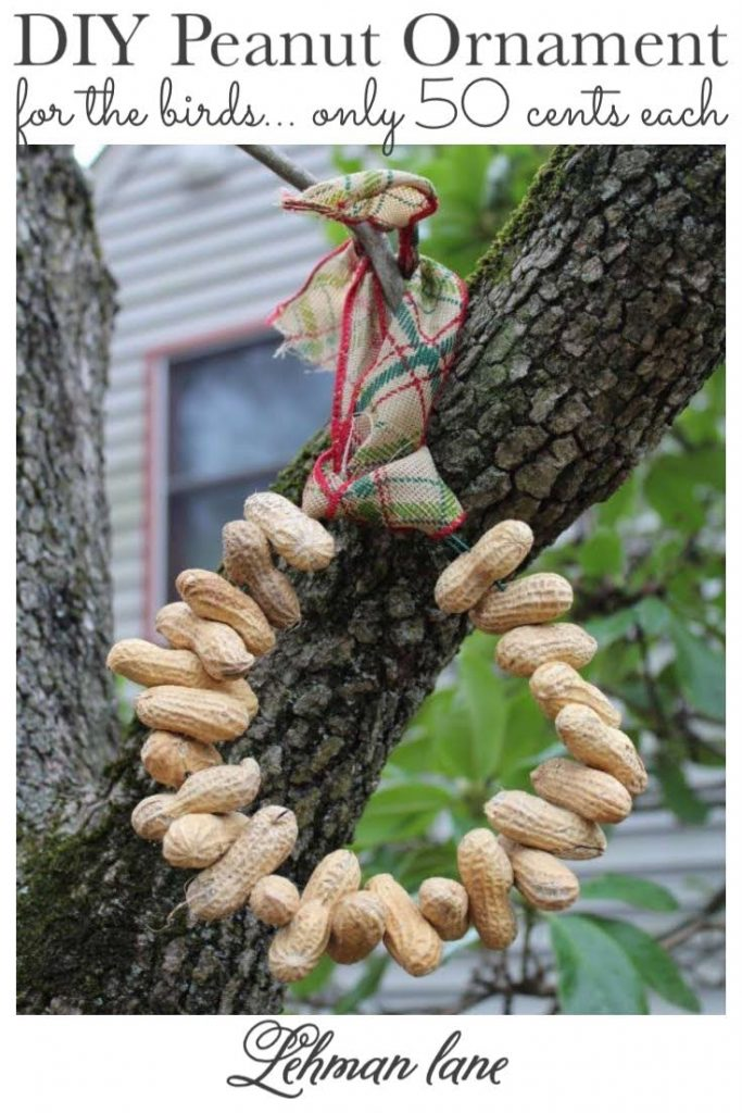 Sharing all the details of how to make a simple DIY Peanut Ornament for the birds that makes a great Christmas gift for the garden for less than 50 cents each! #birds #backyardideas #christmascrafts https://lehmanlane.net