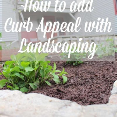 One great way to add curb appeal through landscaping. See how I maximized my curb appeal through landscaping by moving what shrubs we already had and choosing a few new ones. Also check out 10 more curb appeal ideas from my friends! #curbappeal #landscapeideas https://lehmanlane.net