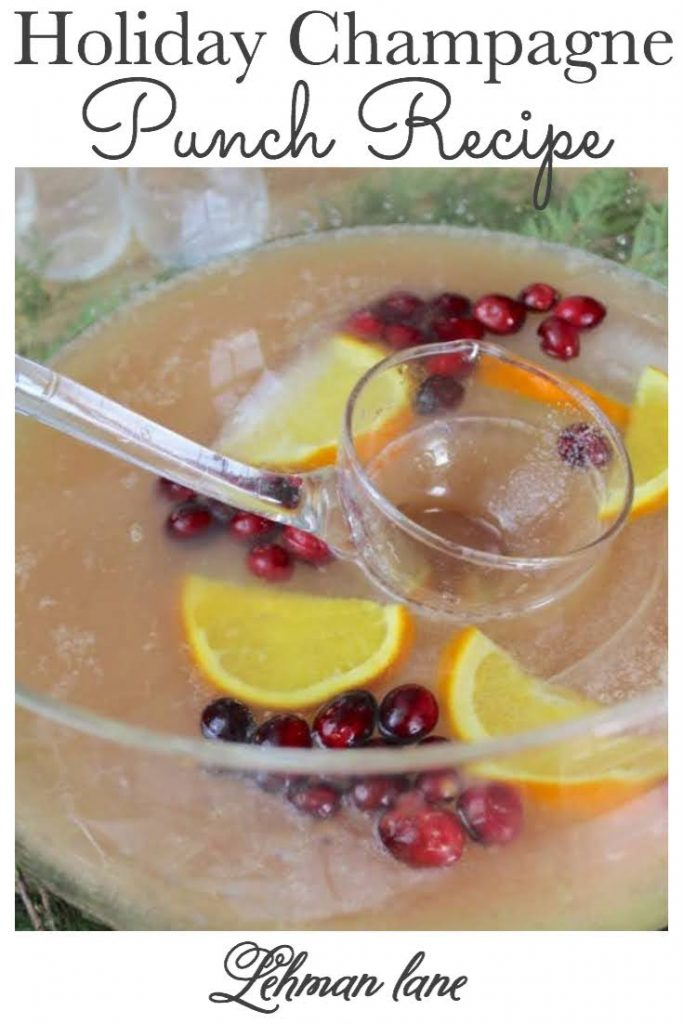 Sharing our Family's Favorite Easy Holiday Champagne Punch Recipe that is perfect for any fancy party or holiday occasion like Christmas, New Year's Eve, Birthdays including how to make the perfect frozen ice ring to go along with it! #easypartypunch #alcoholicpunch #nonalcoholicpunch https://lehmanlane.net