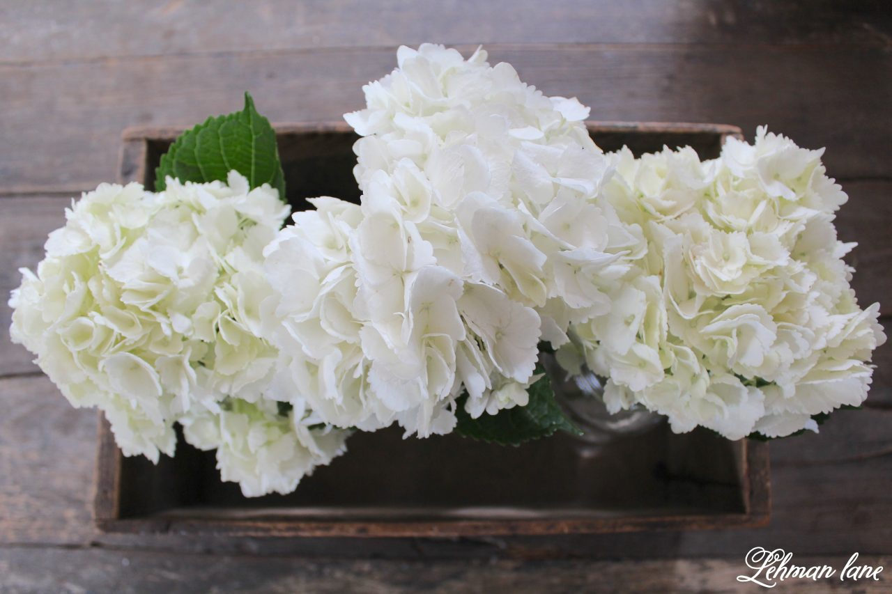Simple Spring Tour - hydrangeas in wood box