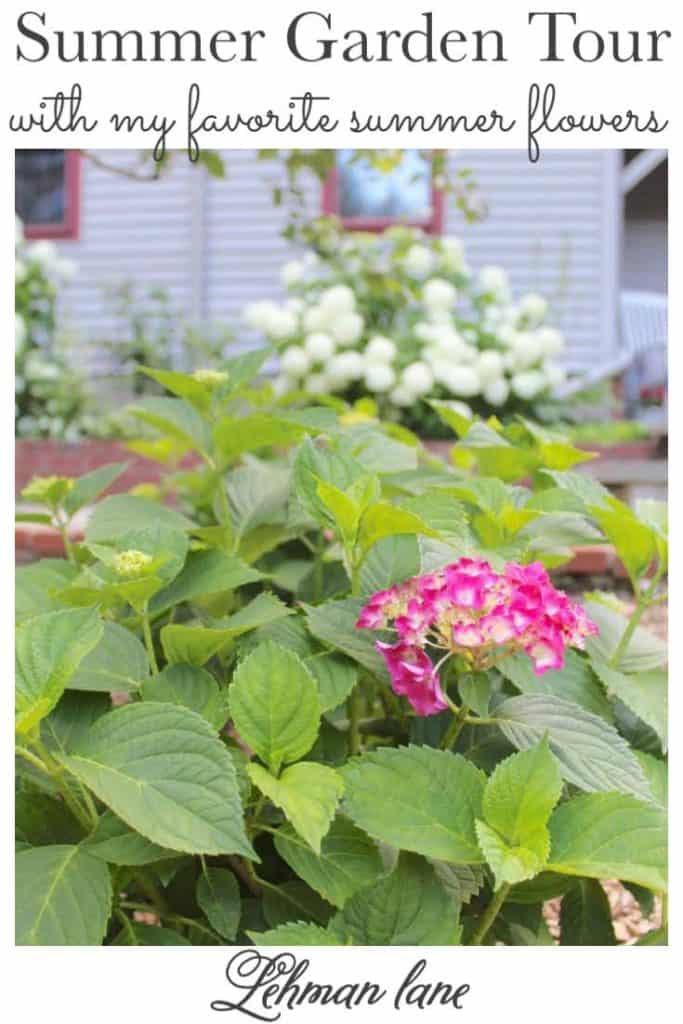 Sharing all the details of my beautiful summer garden with my favorite summer plants & flowers & many more summer gardening tips from my blogging friends with pictures! #summergarden #summergardeningideas https://lehmanlane.net
