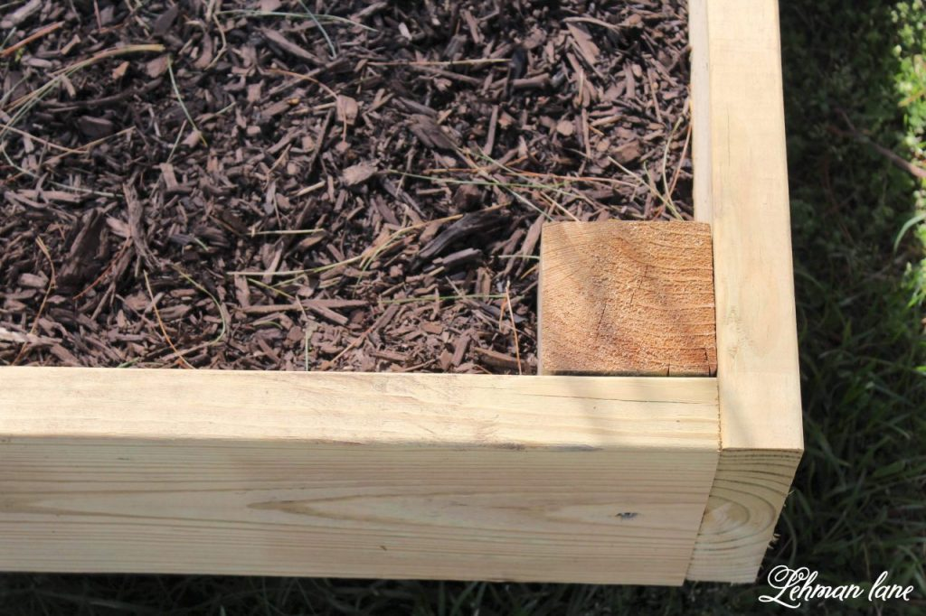Vegetable Garden Beds - Expanding & Planting -We expanded our Vegetable Garden Beds this year. Sharing how we added 2 more raised beds this year using pressure treated boards & what vegetables, herbs & fruit we planted in them. #raisedbeds #gardenbeds https://lehmanlane.net