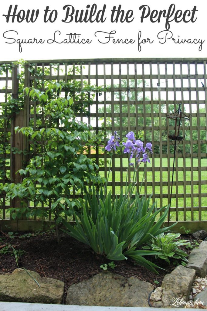How to make a DIY Square Lattice Fence for Privacy - Our square lattice fence was simple to make, inexpensive to build & looks beautiful. #privacyfence #privacyscreen #privacyfenceideas #privacyscreenoutdoor #backyardfenceideas https://lehmanlane.net