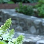 I have started A LOT of gardens around our farmhouse & today I am sharing 6 of my favorites. These small garden ideas are simple to create & look beautiful! #gardening #smallgarden #gardenideas https://lehmanlane.net