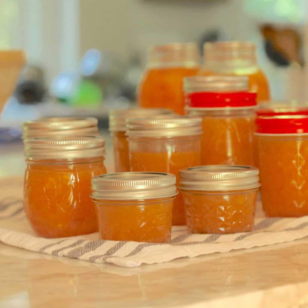 Sharing all my tips & tricks for how to make homemade peach jam.  Our easy peach jam recipe can be eaten right away, canned or frozen. #peachjam #peachfreezerjam #canningrecipes #recipes #peaches https://lehmanlane.net