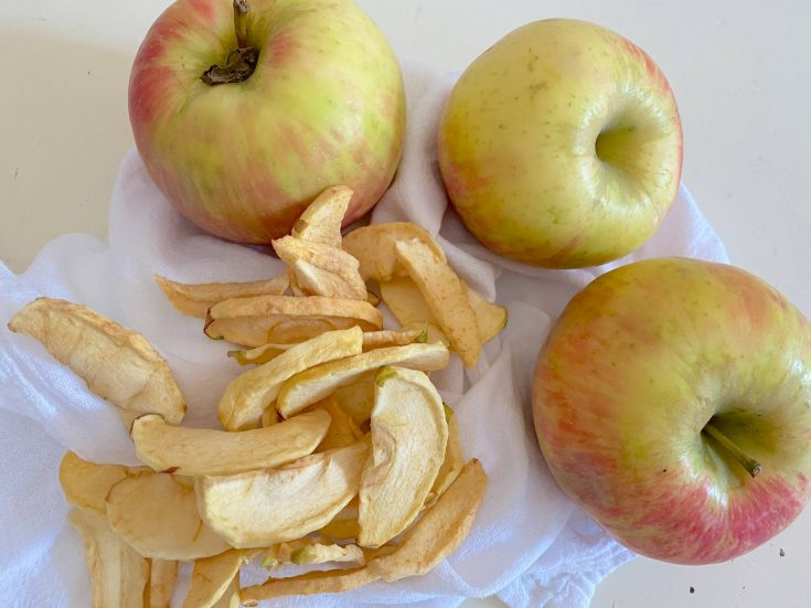 Sharing my incredibly yummy, healthy & easy recipe for homemade dried apple slices made in a dehydrator including tips about how long they take to make & last #apples #applerecipes https://lehmanlane.net